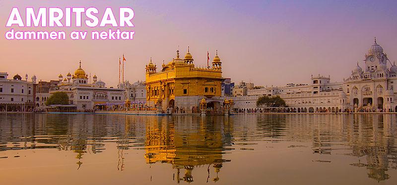 Amritsar och det gyllene templet