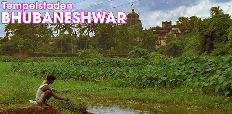 Tempelstaden Bhubaneswar, Odisha, Indien