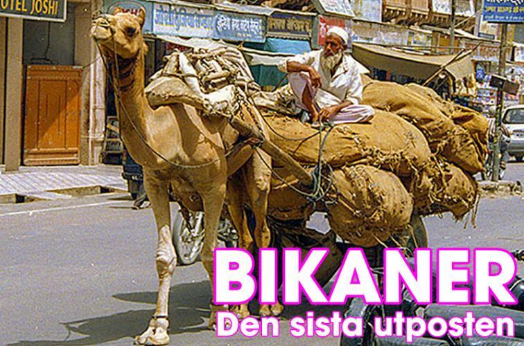 Bikaner, Rajasthan, Indien