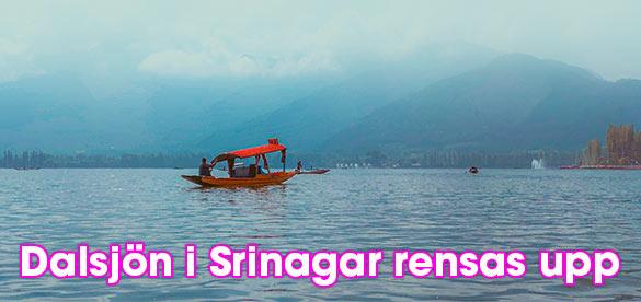 Dalsjön i Srinagar rensas upp