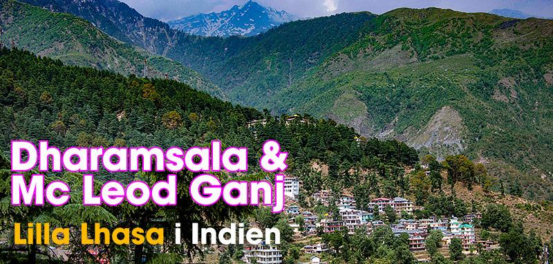 Dharamsala & McLeod Ganj