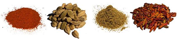 Orter Kryddor Indien Nu Allt Om Indien