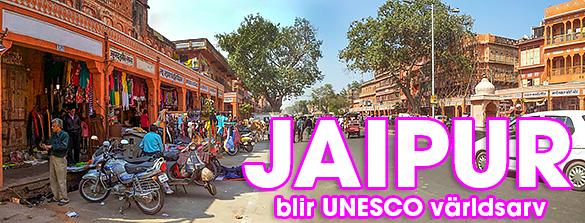Den rosa staden Jaipur i Rajasthan, Indien