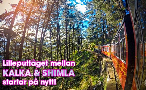 Leksakståget mellan Kalka och Shimla i Indien åter i drift