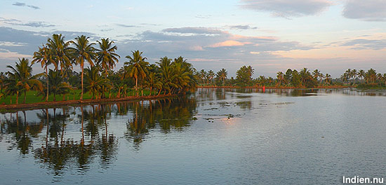 Backwater i Kerala