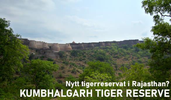 Kumbhalgarh, Rajasthan, Indien får nytt tigerreservat?