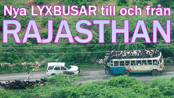Nya lyxbussar i Rajasthan