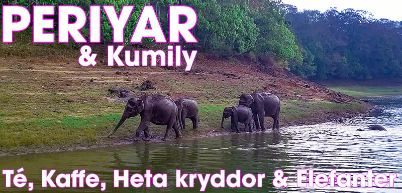 Periyar Wildlife Sanctuary & Kumily, Kerala, Indien