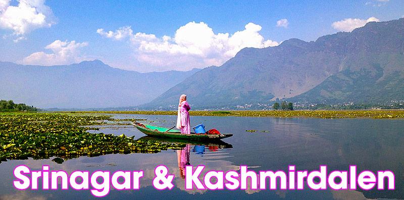 Srinagar & Kashmirdalen