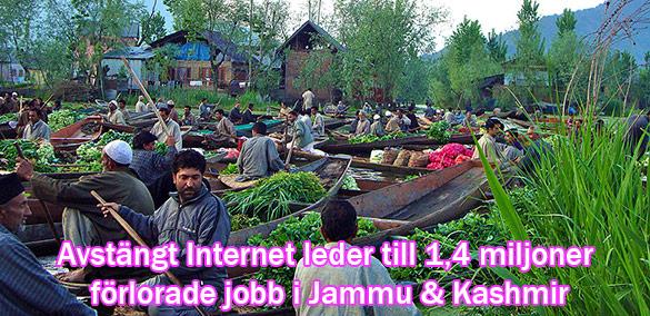 Förlorade jobb i Kashmir